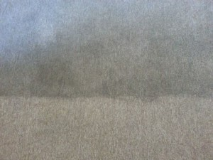 carpet before and after